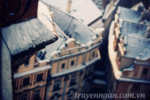 tram-dung-nao-cho-yeu-thuong