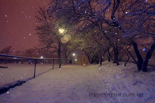 Bụi tuyết lấp lánh