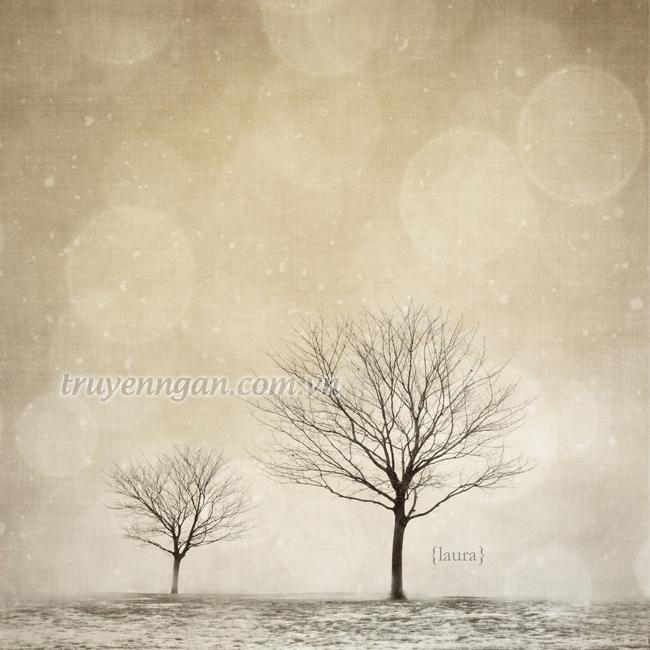 0 square cute pretty Favim.com 474592 - Truyện ngắn: truyện tình cây lá và gió